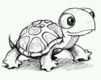 ŽelvíHolka